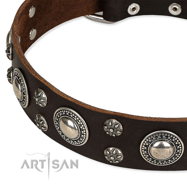 Easy to use leather dog collar with extra strong non-rusting fittings