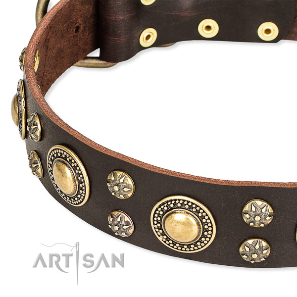 Snugly fitted leather dog collar with almost unbreakable durable hardware