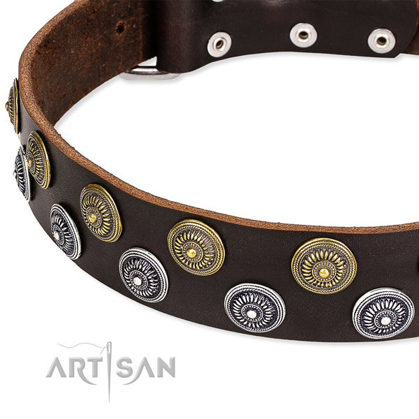Easy to use leather dog collar with extra strong chrome plated fittings