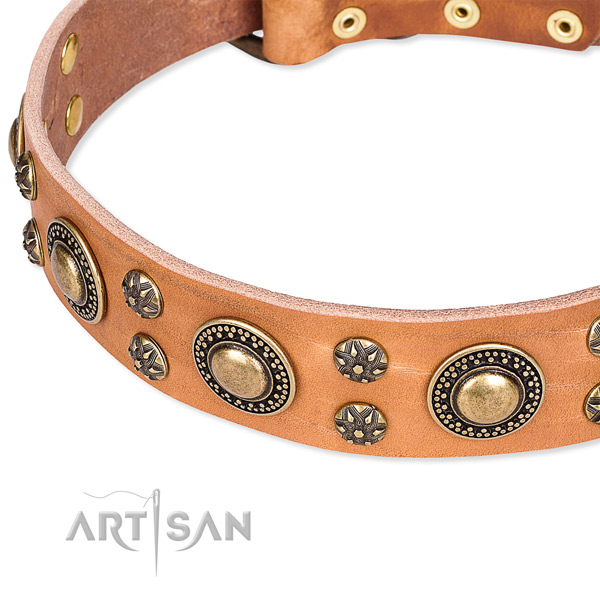 Snugly fitted leather dog collar with extra strong rust-proof set of hardware
