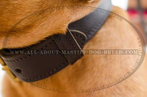 Dogue-de-Bordeaux 2 ply leather collar