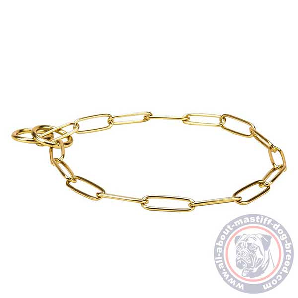 Comfortable brass dog collar