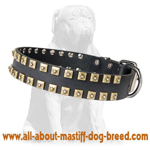 Reliable leather dog collar with nickel buckle and D-ring