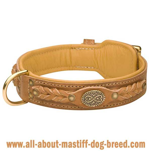 Braided dog collar made of genuine tan leather