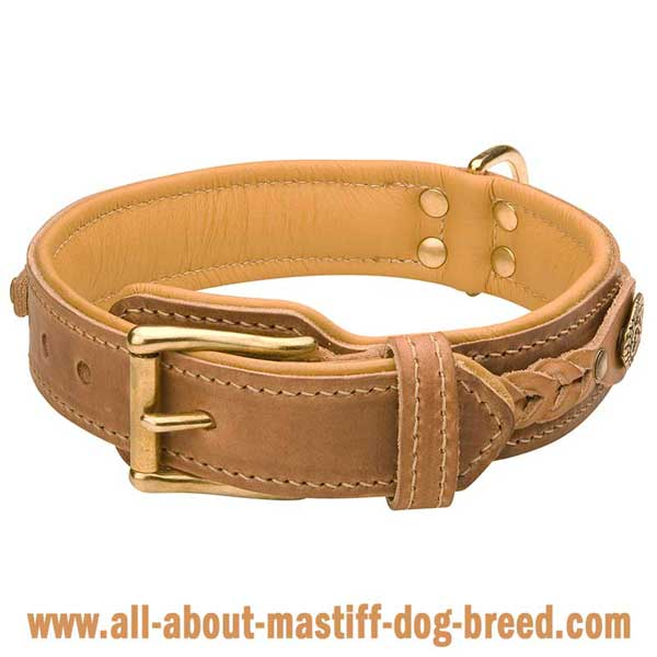 French Mastiff Dog Collar of Leather with Rustproof Brass Fittings