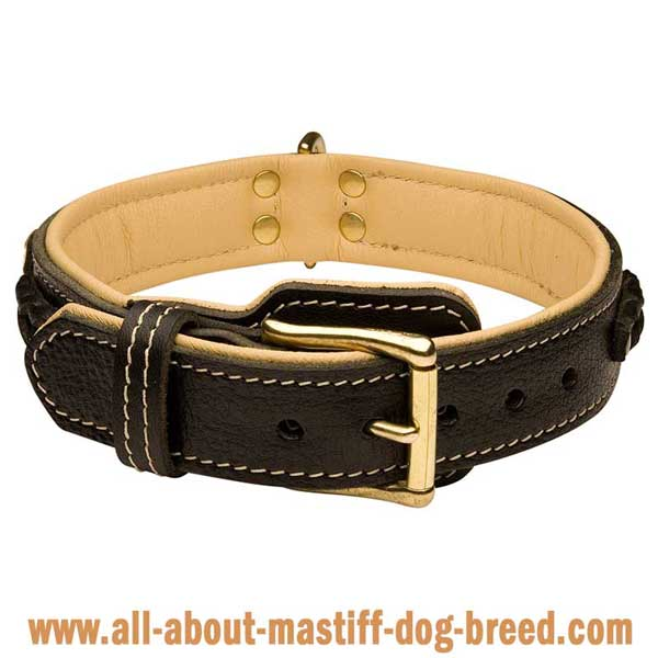 Braided dog collar made of soft tan leather