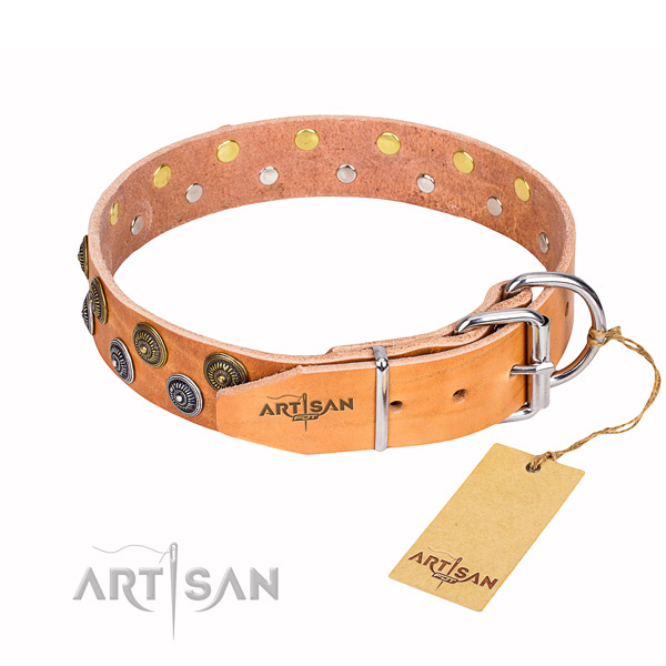 Awesome leather collar for your darling dog