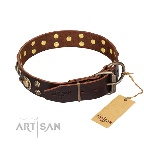 Wear-proof leather collar for your stunning four-legged friend