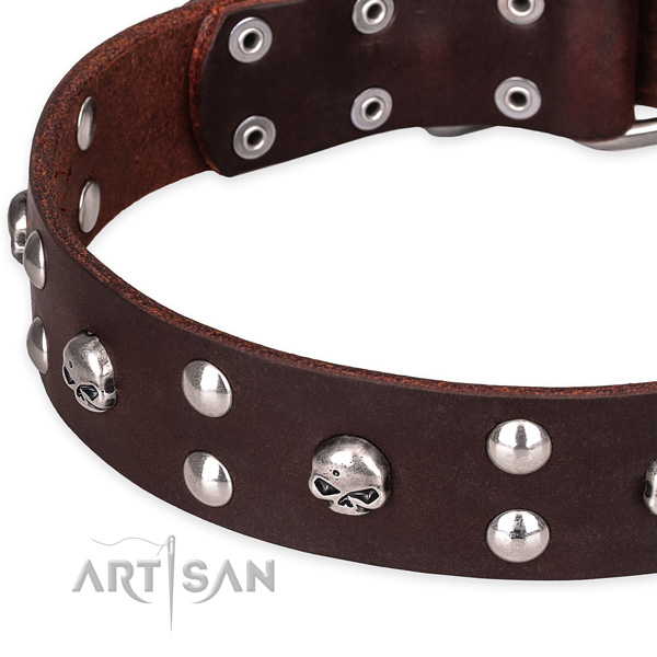 Leather dog collar with thoroughly polished edges for pleasant daily walking