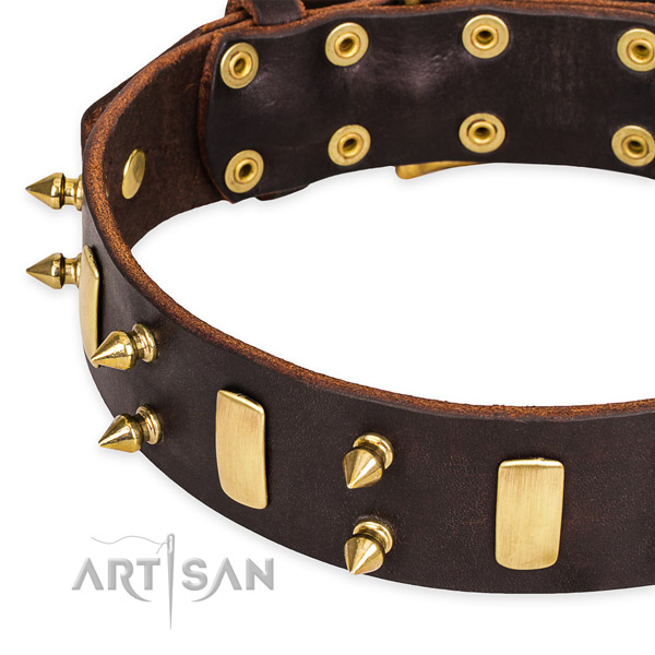 Leather dog collar with rounded edges for pleasant everyday appliance