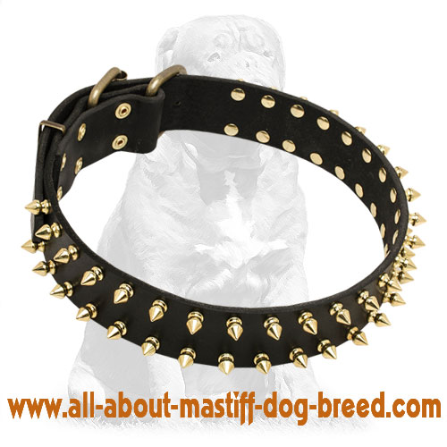 Handmade black leather dog collar with brass spikes