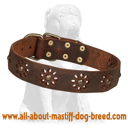 Floral brown leather dog collar