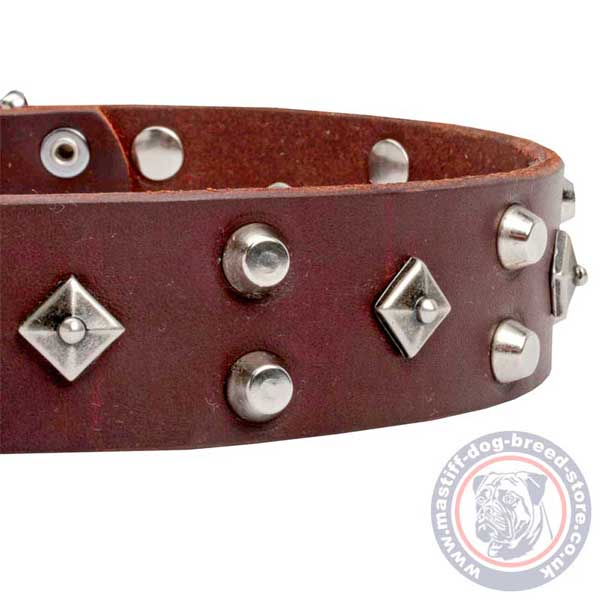 Studded brown leather dog collar