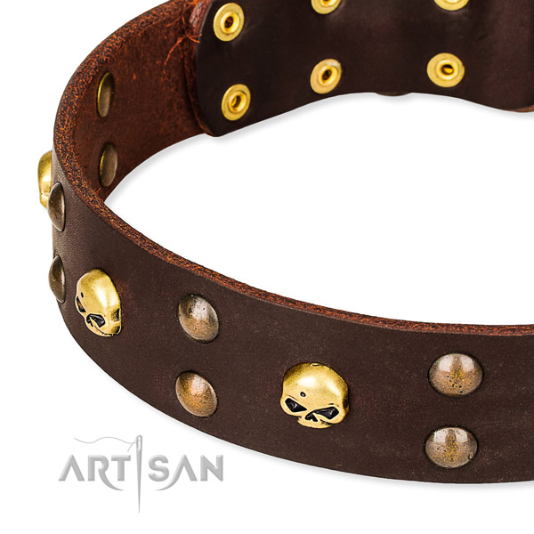 Leather dog collar with rounded edges for convenient everyday appliance