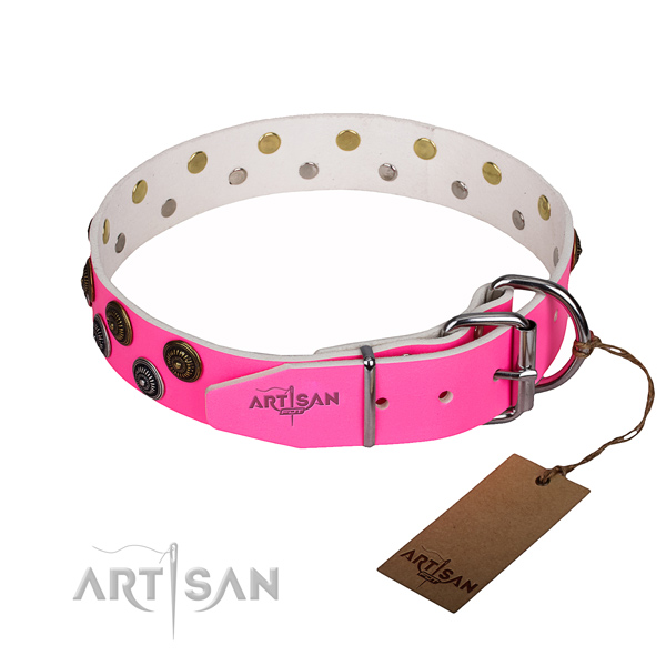 Durable leather collar for your stunning canine