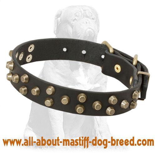 Leather dog collar with hand set studs