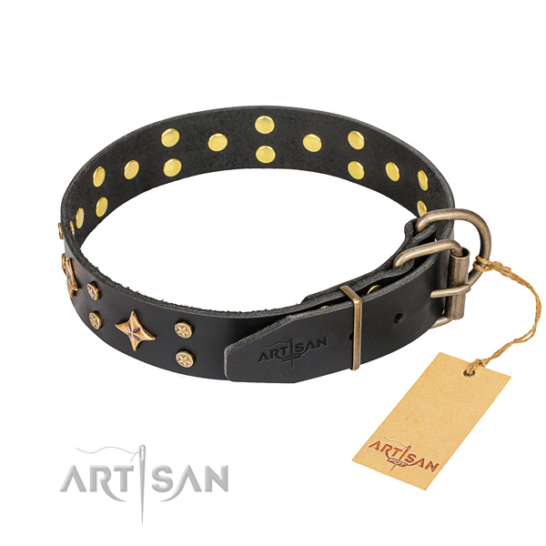 Stylish leather collar for your noble dog