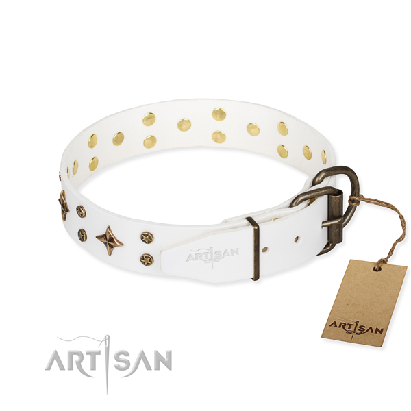 Versatile leather collar for your elegant dog