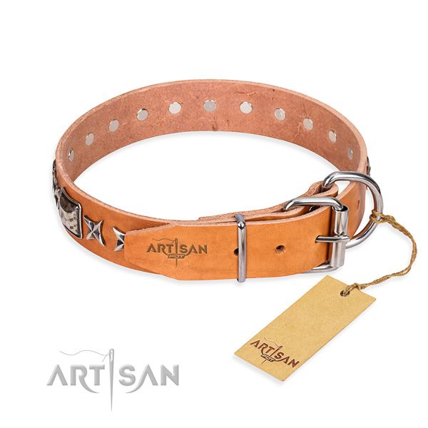 Tear-proof leather collar for your stunning four-legged friend