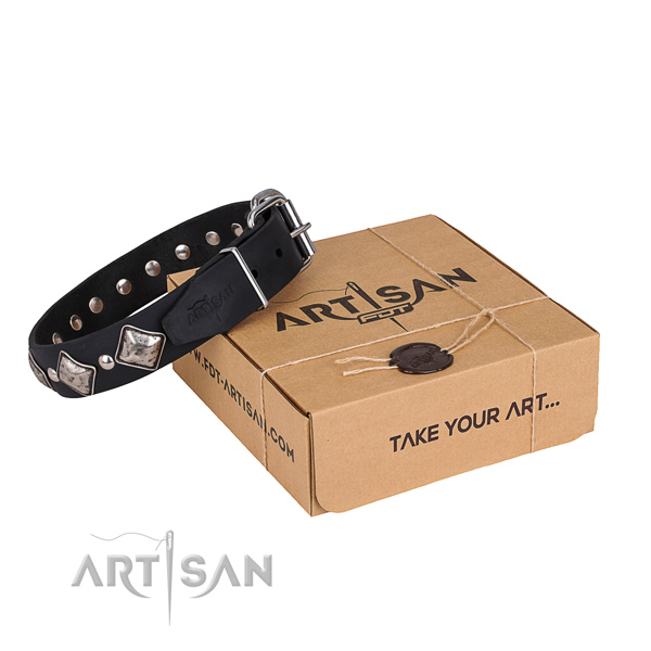 Day-to-day leather dog collar with extraordinary embellishments