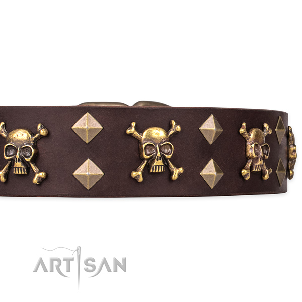 High quality leather dog collar for easy walking with Mastiff