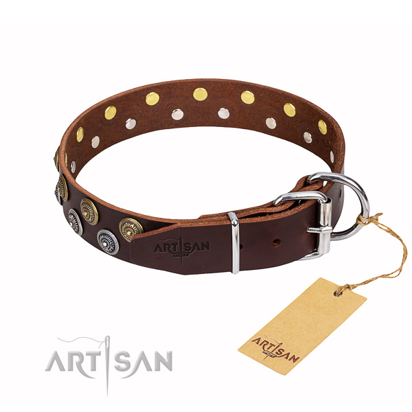 Long-lasting leather dog collar with rust-proof details