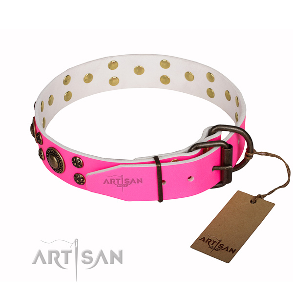 Practical leather collar for your noble dog