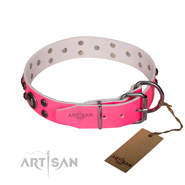 Durable leather collar for your stunning pet