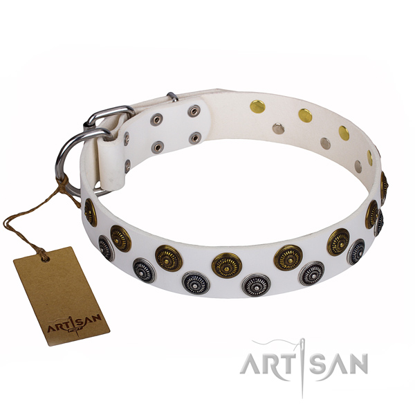 Multifunctional leather collar for your elegant pet