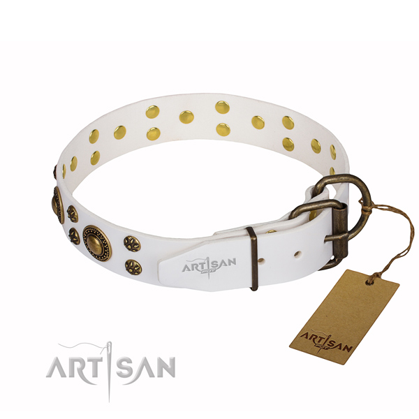 Multifunctional leather collar for your noble canine