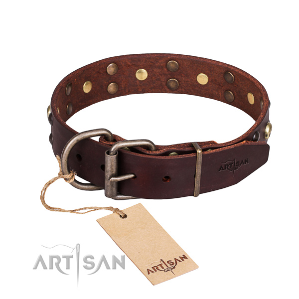 Everyday leather dog collar with remarkable adornments