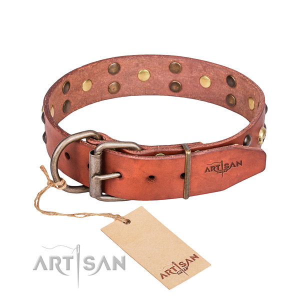 Fancy leather dog collar for fail-safe use