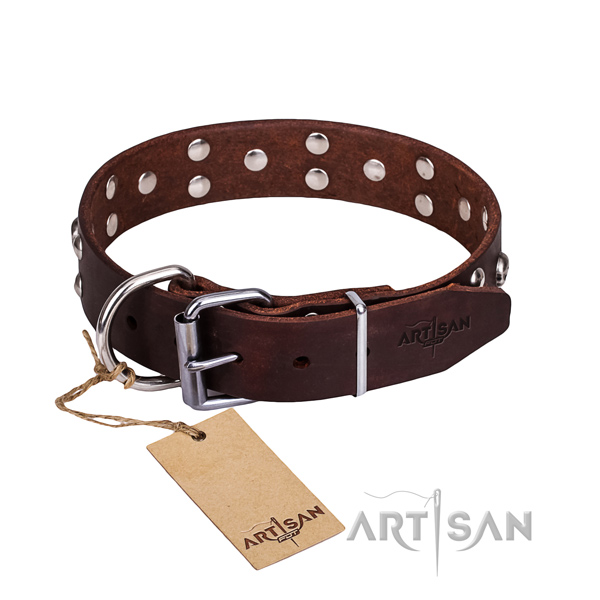 High quality leather dog collar for stylish walking