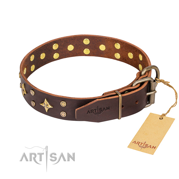 Daily leather collar for your stunning canine
