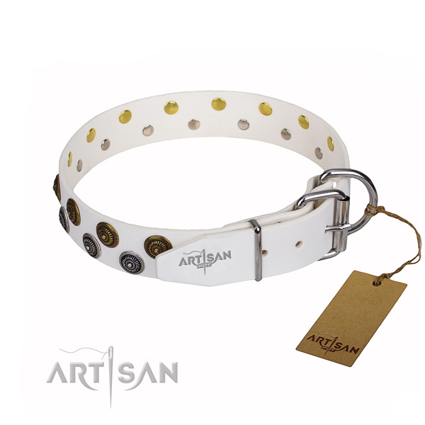 Reliable leather dog collar with durable elements