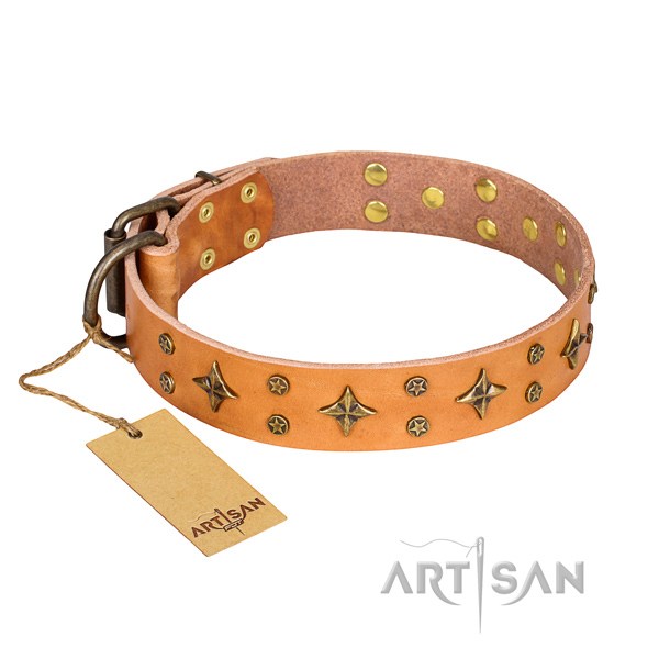 Tough leather dog collar with sturdy fittings