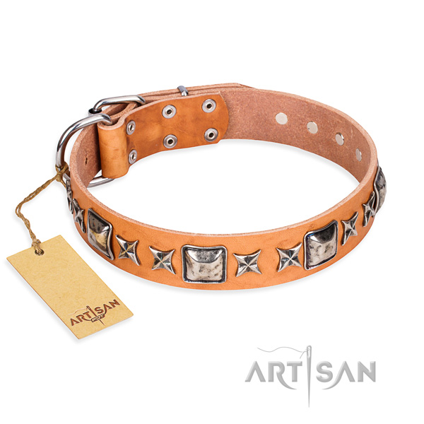 Sturdy leather dog collar with durable hardware