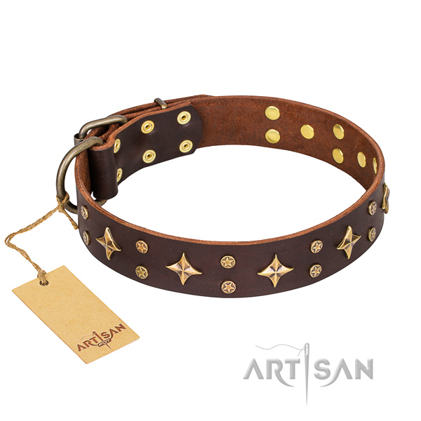Dependable leather dog collar with riveted elements