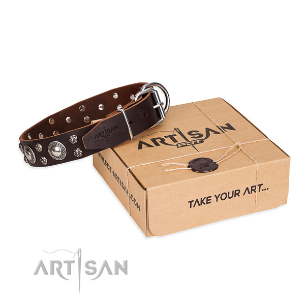Day-to-day leather dog collar with astounding decorations