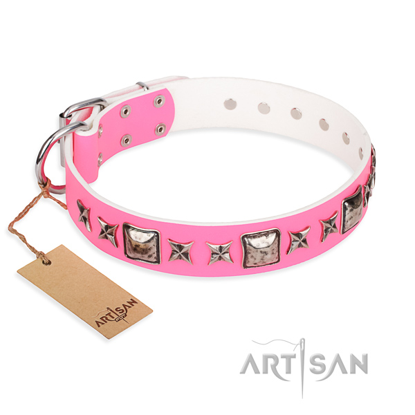Durable leather dog collar with non-rusting hardware