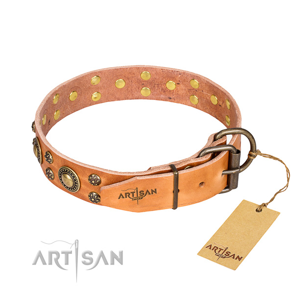 Tough leather dog collar with rust-proof details
