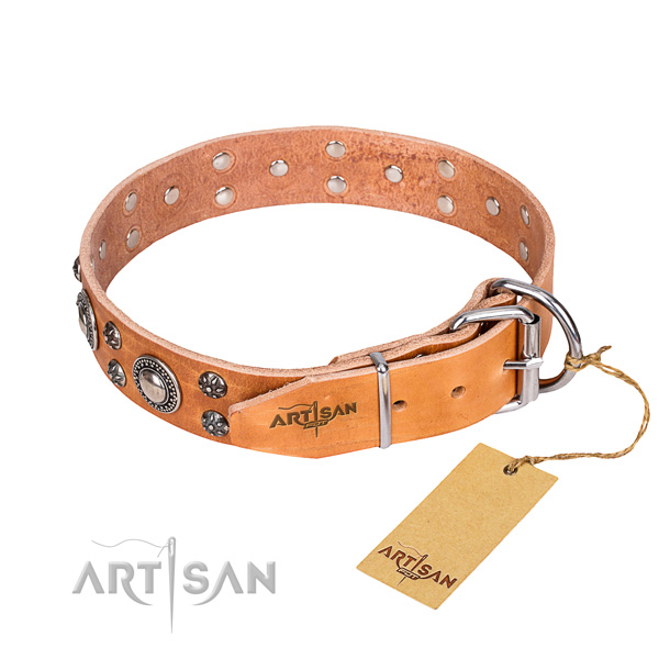 Wear-proof leather collar for your stunning pet