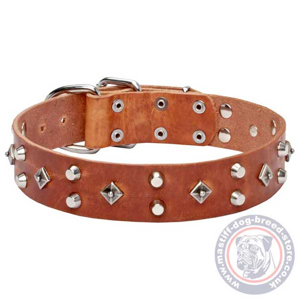 Fashionable tan leather dog collar