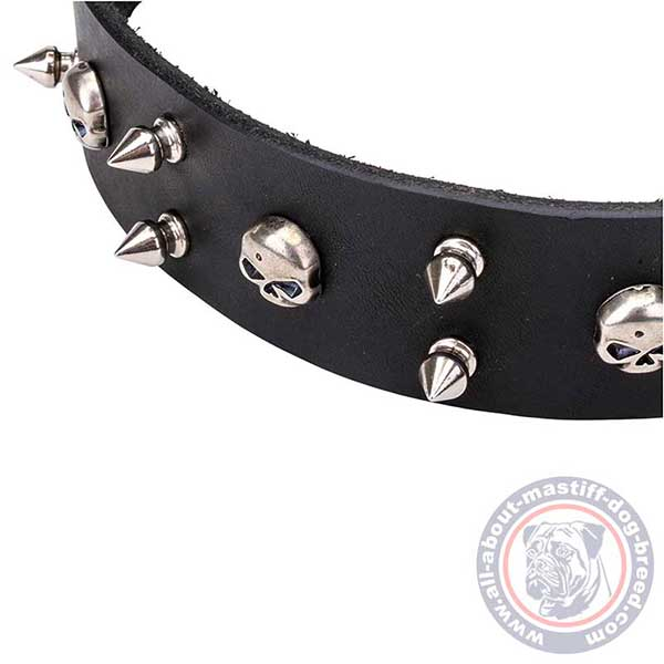 Spiked and studded black leather dog collar