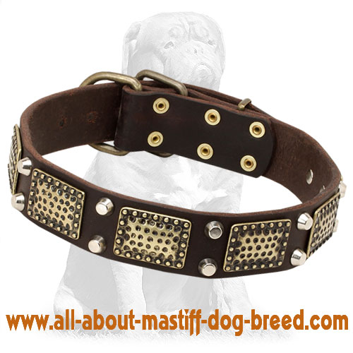 Handmade leather dog collar decorated with plates and cones
