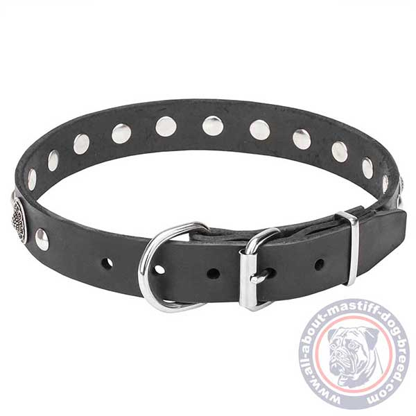 Leather dog collar with sturdy fittings