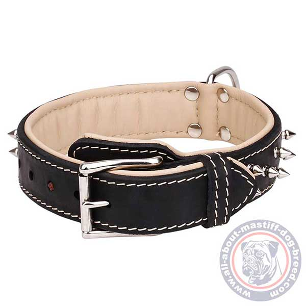 Leather dog collar with reliable hardware