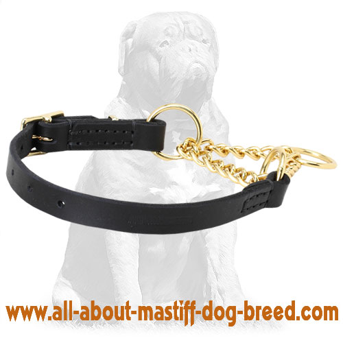 Gentle to skin martingale dog collar with leather part