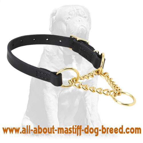 Martingale dog collar made of durable brass