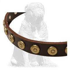 Mastiff Leather Dog Collar Decorated with Brass Doted Circles